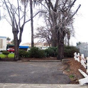 Redwoodcityparksblog