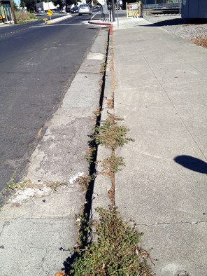 Crumbling Main Street curbs